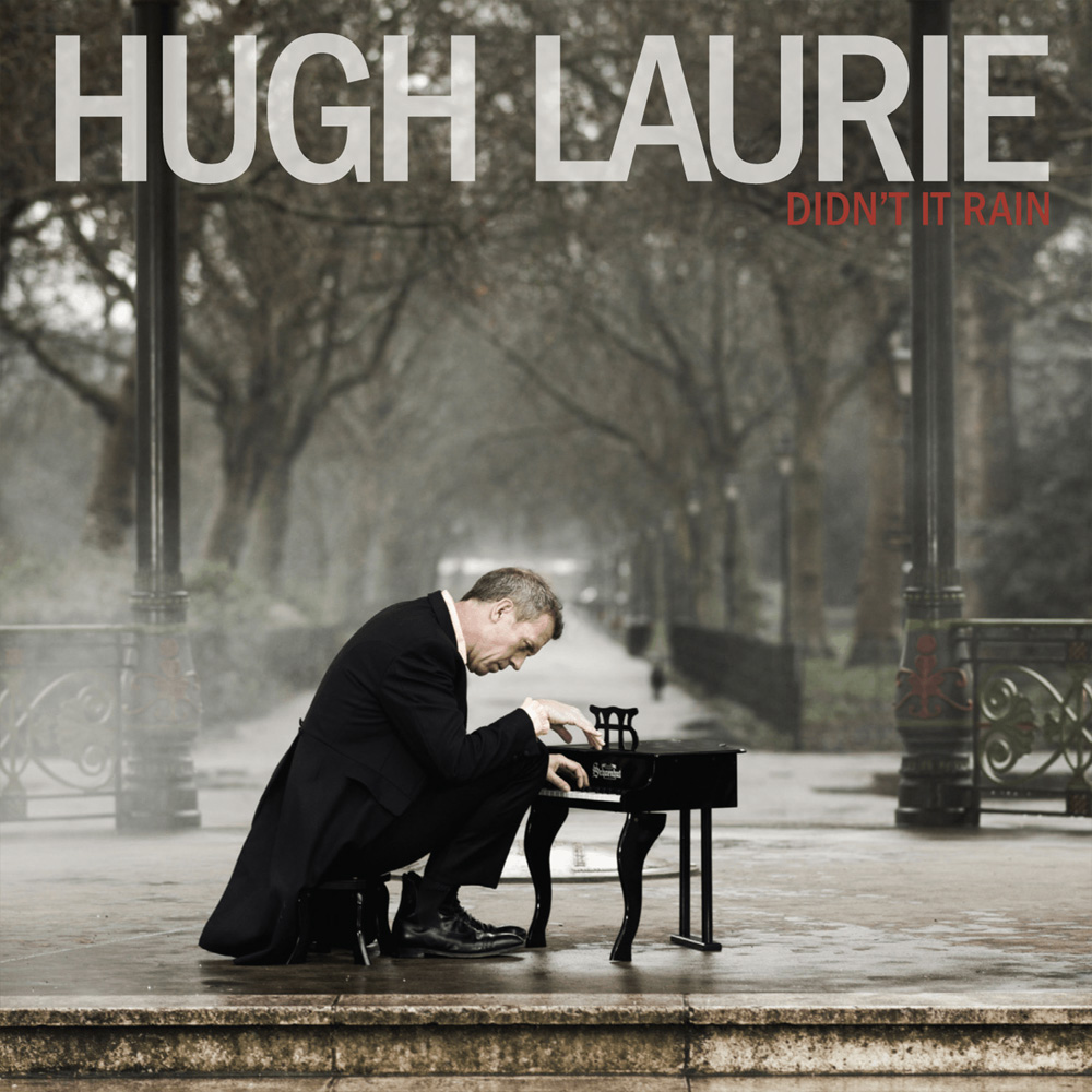 18. Hugh Laurie - Didn't it rain